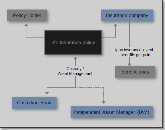 Life Insurance Cycle (Life Settlement)