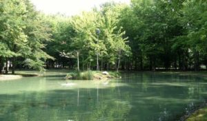 Image of Our House facility private pond - exterior